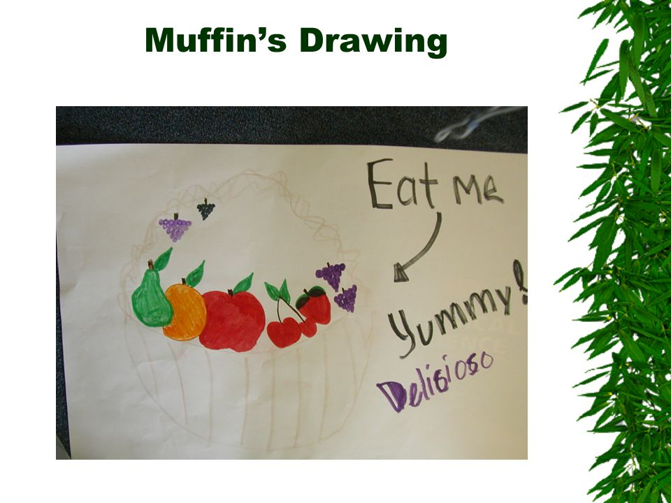 Muffin's Drawing