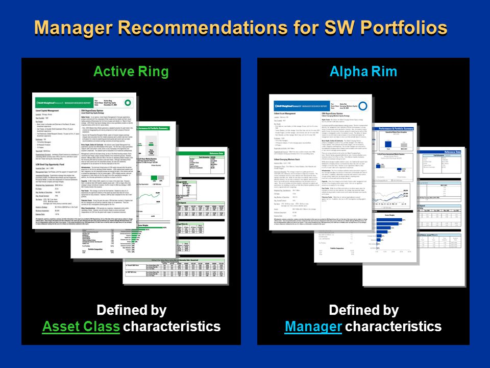 Active Ring Defined by Asset Class characteristics Manager Recommendations for SW Portfolios Alpha Rim Defined by Manager characteristics