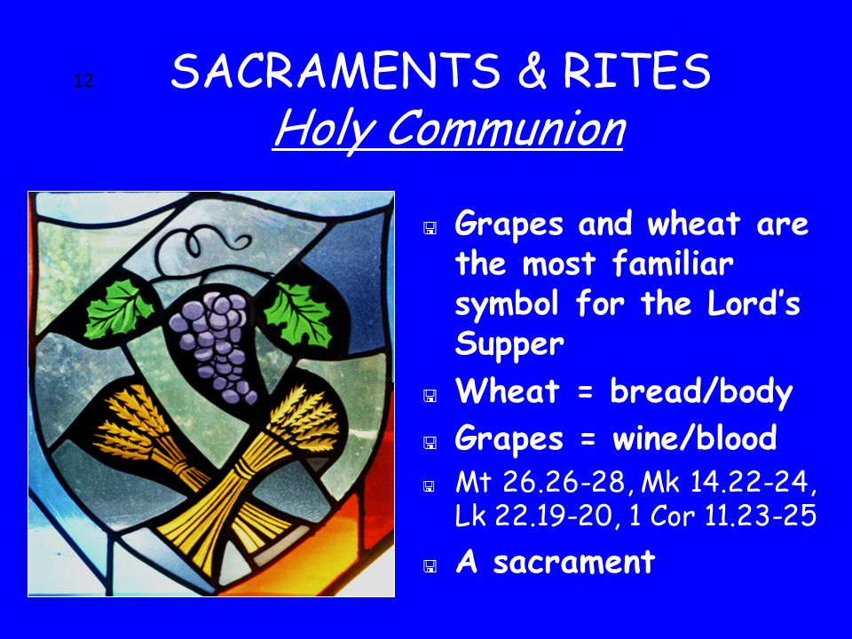 12 SACRAMENTS & RITES Holy Communion < Grapes and wheat are the most familiar symbol for the Lord's Supper < Wheat = bread/body < Grapes = wine/blood < Mt 26.26-28, Mk 14.22-24, Lk 22.19-20, 1 Cor 11.23-25 < A sacrament