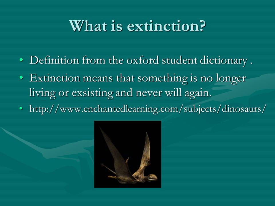 Extinction of the dinosaurs By Eireann and Hayley