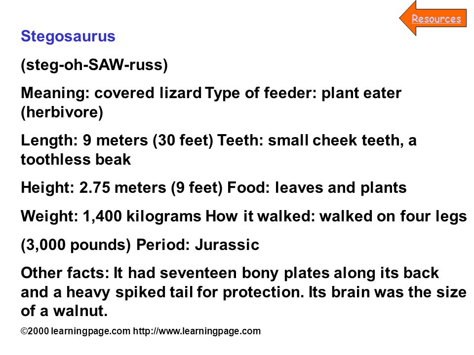 Stegosaurus (steg-oh-SAW-russ) Meaning: covered lizard Type of feeder: plant eater (herbivore) Length: 9 meters (30 feet) Teeth: small cheek teeth, a toothless beak Height: 2.75 meters (9 feet) Food: leaves and plants Weight: 1,400 kilograms How it walked: walked on four legs (3,000 pounds) Period: Jurassic Other facts: It had seventeen bony plates along its back and a heavy spiked tail for protection.