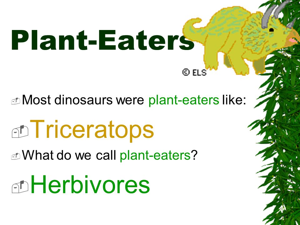 What Colors were dinosaurs.