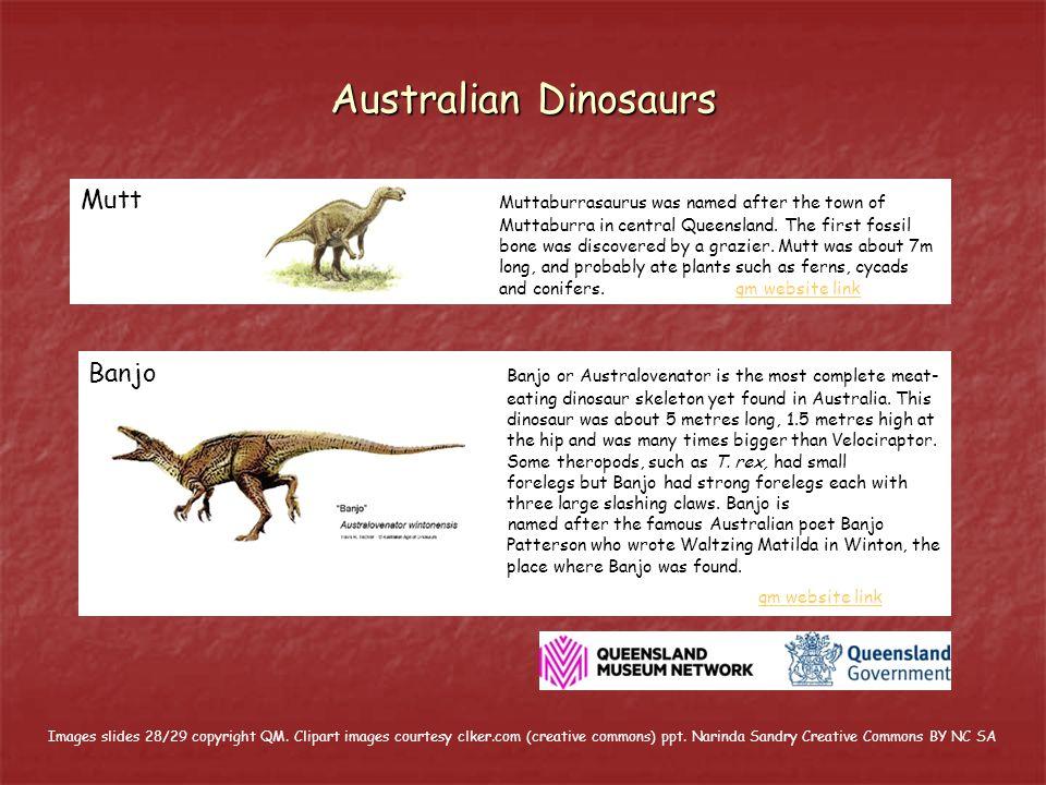 Australian Dinosaurs Mutt Muttaburrasaurus was named after the town of Muttaburra in central Queensland.