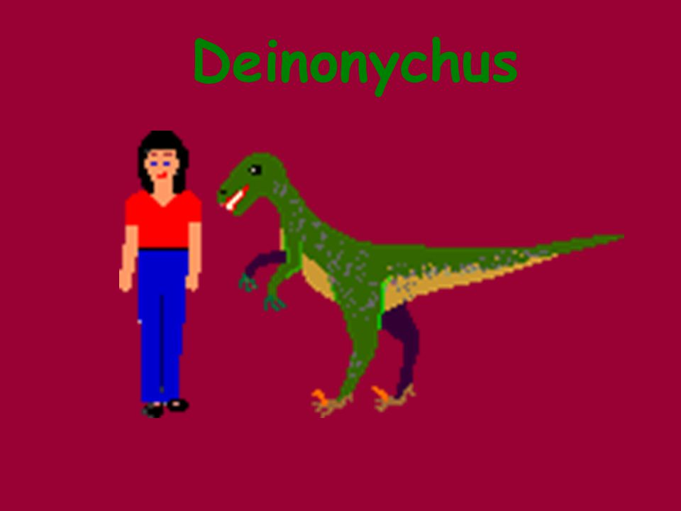 Terrible Claw Carnivore 5ft tall Lived during Cretaceous Period Smartest Dinosaur Sharp teeth 3 fingers with claws 4 Toes with retractable claws Deinonychus - Dinosaurs For Kids - KidsDinos.comDeinonychus - Dinosaurs For Kids - KidsDinos.com