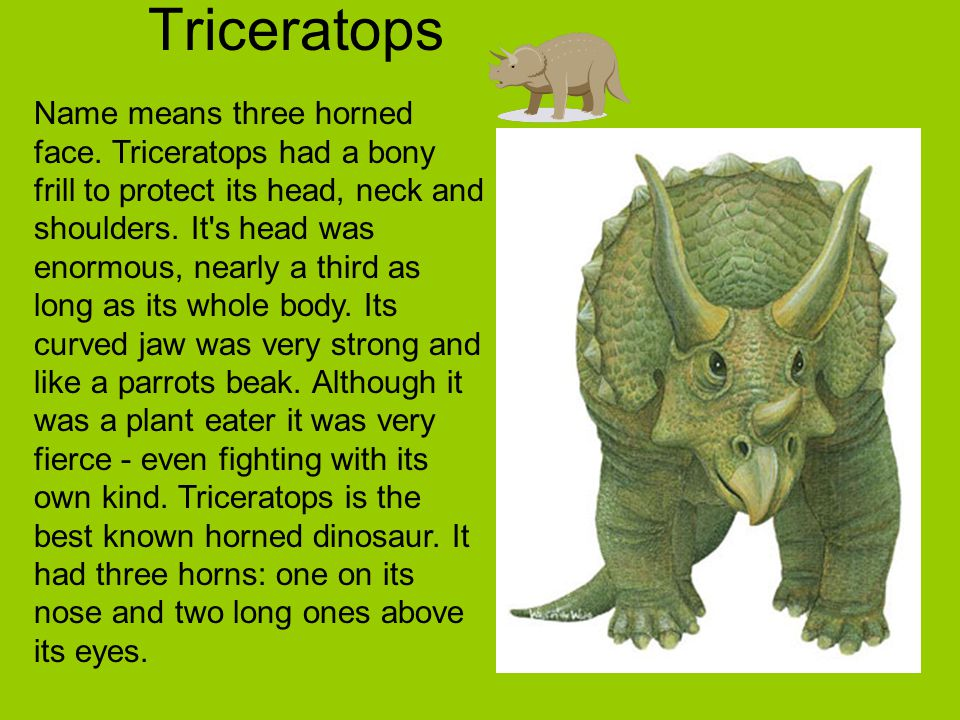 Triceratops Name means three horned face. Triceratops had a bony frill to protect its head, neck and shoulders. It's head was enormous, nearly a third