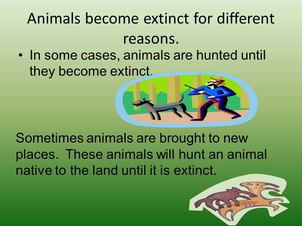 Other animals, besides dinosaurs, have become extinct.