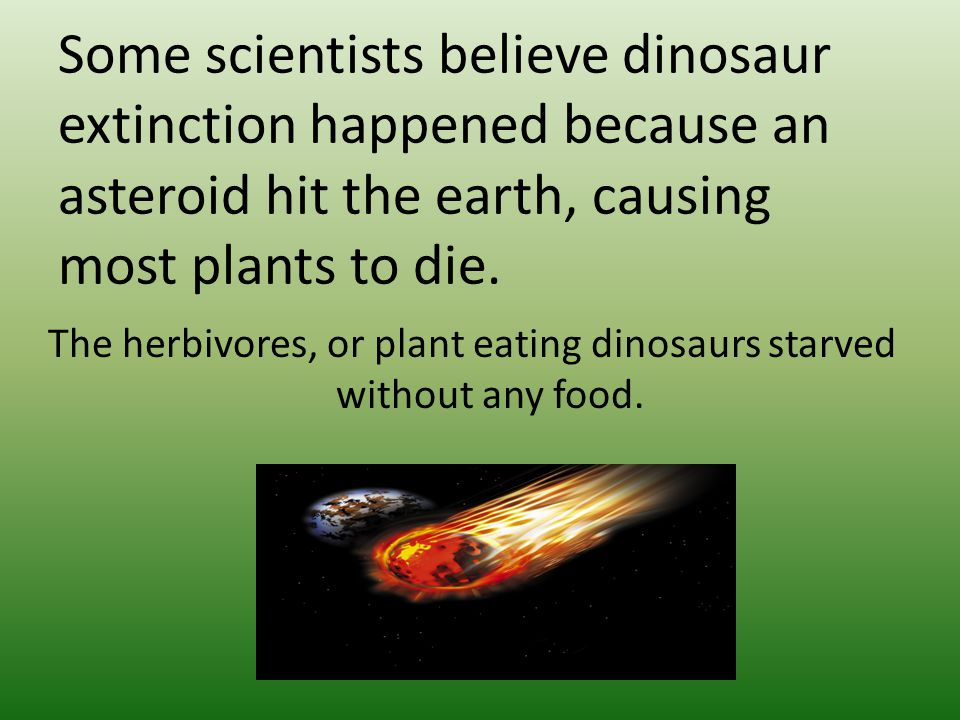 Some scientists believe dinosaur extinction happened because an asteroid hit the earth, causing most plants to die.