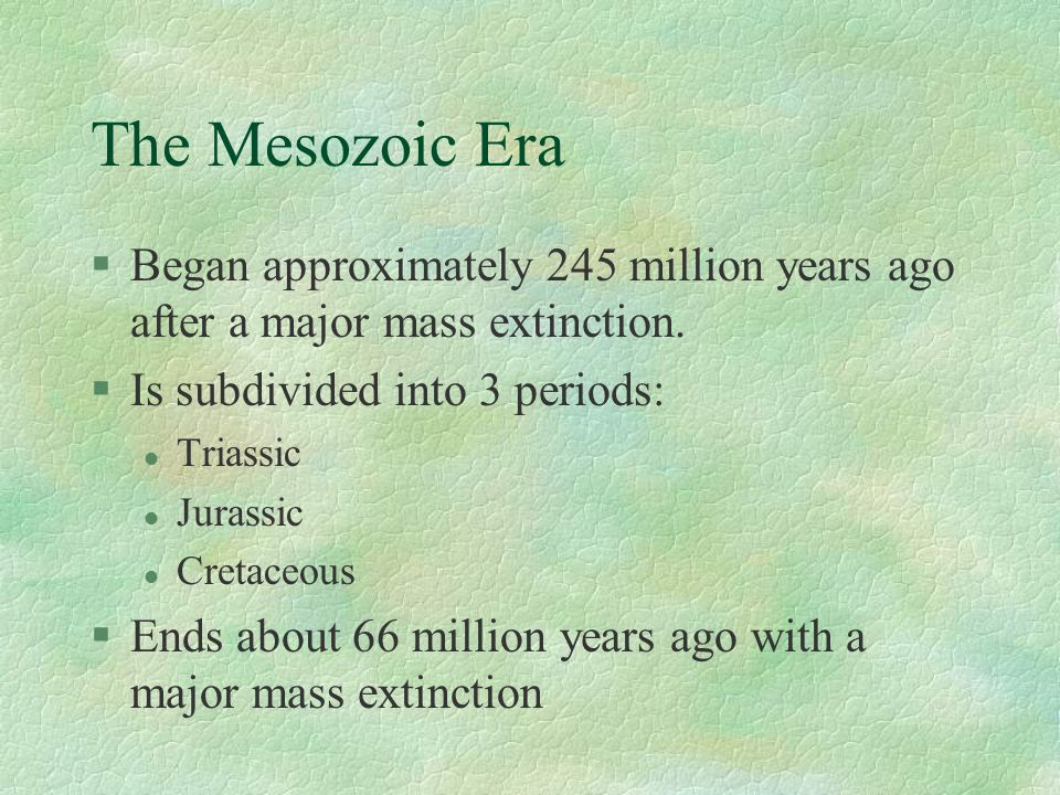 The Mesozoic Era §Began approximately 245 million years ago after a major mass extinction.