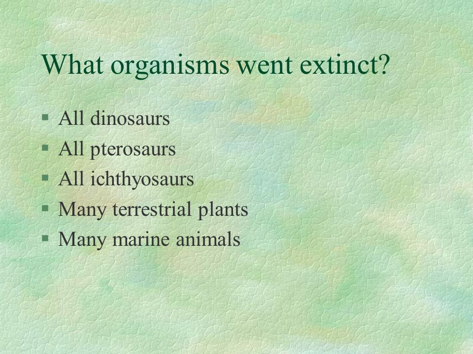 What organisms went extinct.