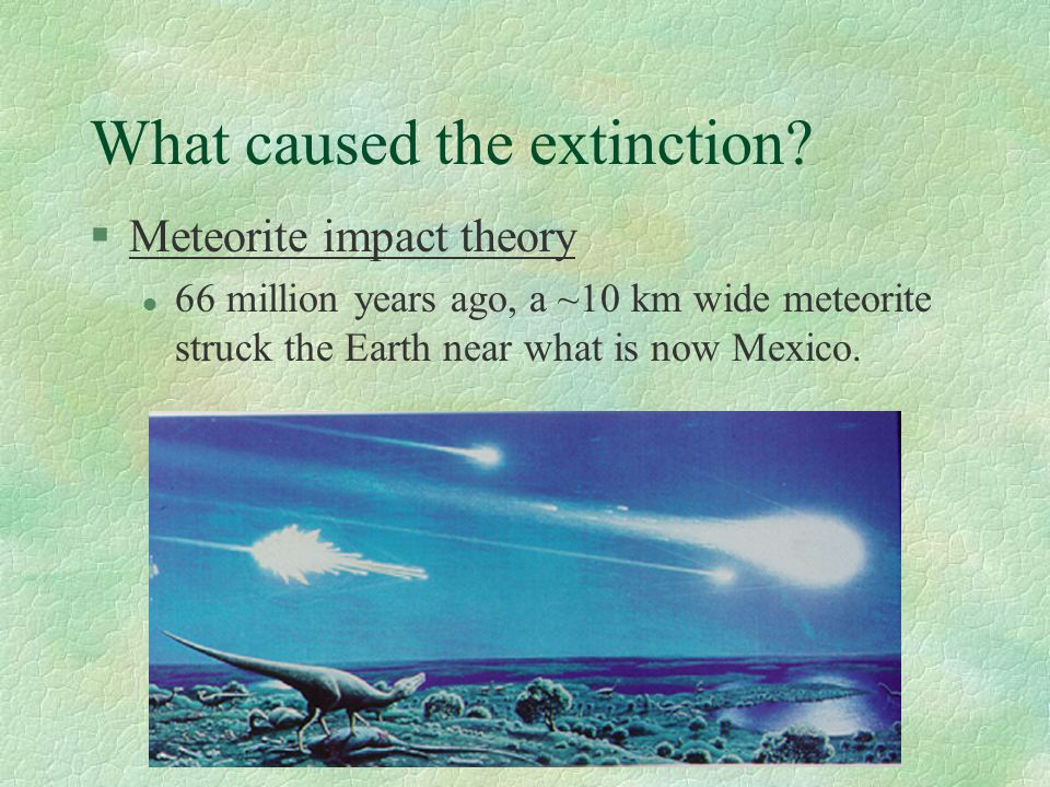 What caused the extinction.
