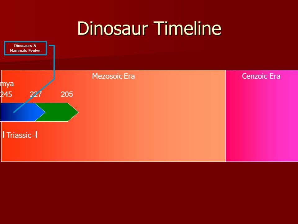 Mezosoic EraCenzoic Era Dinosaur Timeline 227 245 Triassic mya Dinosaurs & Mammals Evolve 205