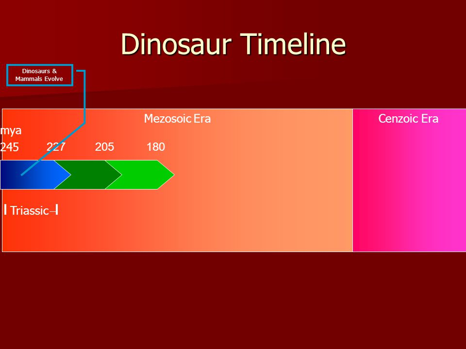 Mezosoic EraCenzoic Era Dinosaur Timeline 227 245 Triassic mya Dinosaurs & Mammals Evolve 205180