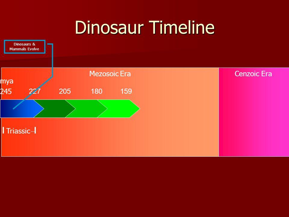 Mezosoic EraCenzoic Era Dinosaur Timeline 227 245 Triassic mya Dinosaurs & Mammals Evolve 205180159