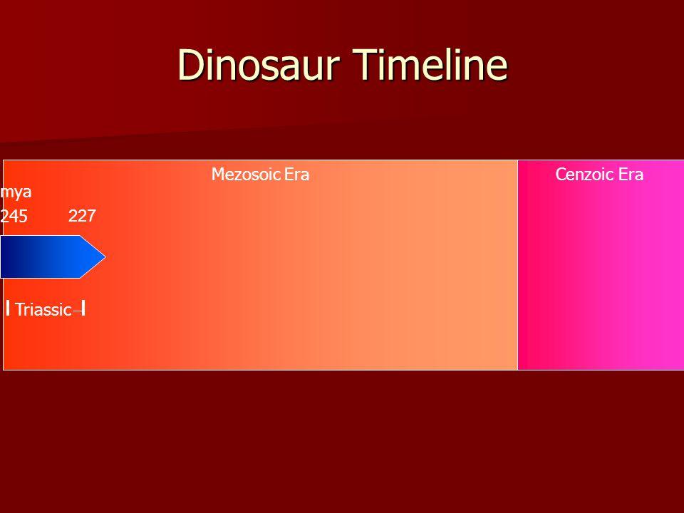Mezosoic EraCenzoic Era Dinosaur Timeline 245 Triassic mya 227