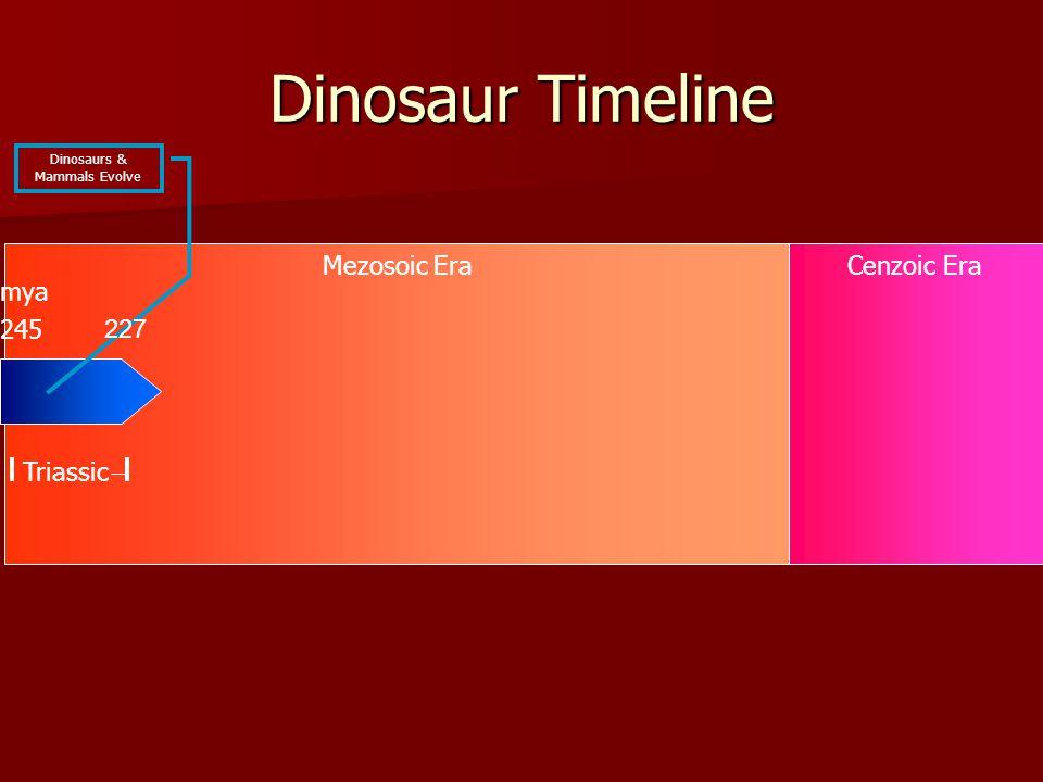 Mezosoic EraCenzoic Era Dinosaur Timeline 245 Triassic mya Dinosaurs & Mammals Evolve 227