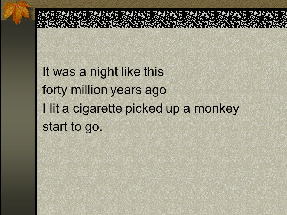 It was a night like this forty million years ago I lit a cigarette picked up a monkey start to go.