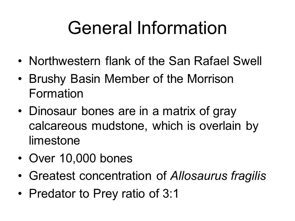 General Information Northwestern flank of the San Rafael Swell Brushy Basin Member of the Morrison Formation Dinosaur bones are in a matrix of gray calcareous mudstone, which is overlain by limestone Over 10,000 bones Greatest concentration of Allosaurus fragilis Predator to Prey ratio of 3:1