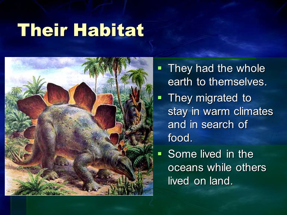 Their Habitat  They had the whole earth to themselves.