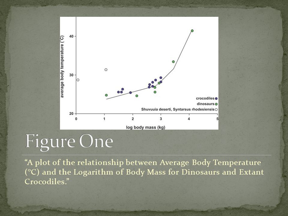 A plot of the relationship between Average Body Temperature (°C) and the Logarithm of Body Mass for Dinosaurs and Extant Crocodiles.
