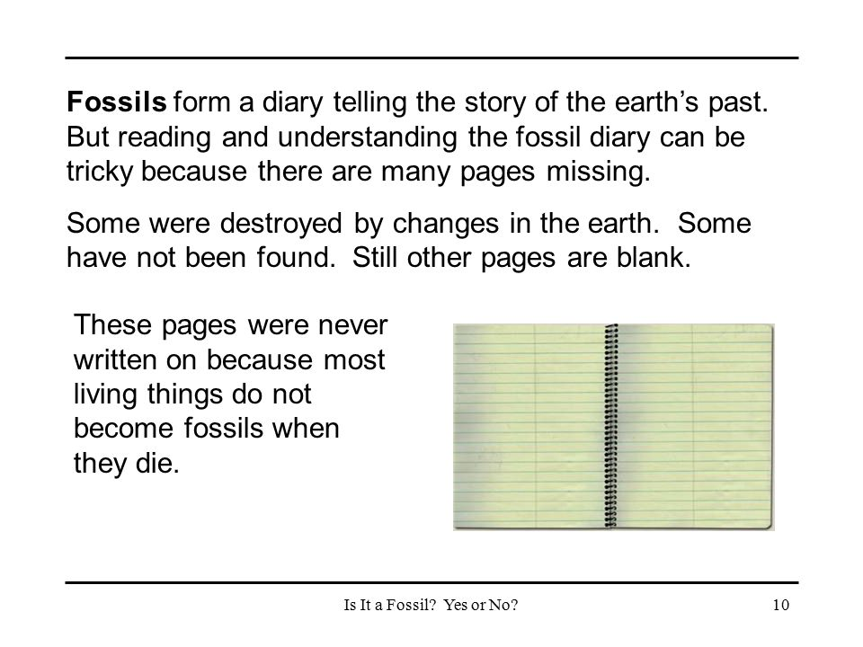 Is It a Fossil? Yes or No?10 Fossils form a diary telling the story of the earth's past. But reading and understanding the fossil diary can be tricky