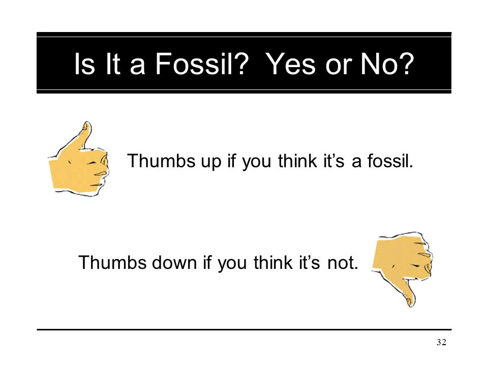 32 Is It a Fossil? Yes or No? Thumbs up if you think it's a fossil. Thumbs down if you think it's not.
