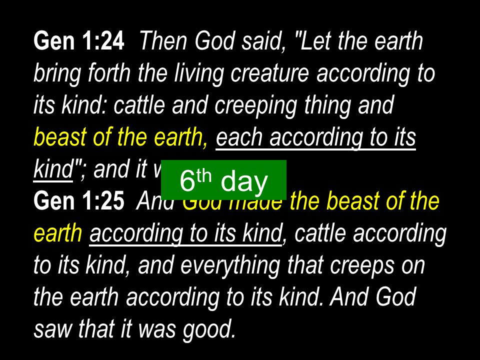 Gen 1:24 Then God said, Let the earth bring forth the living creature according to its kind: cattle and creeping thing and beast of the earth, each according to its kind ; and it was so.