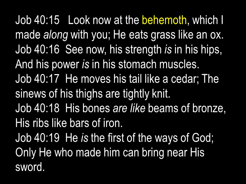 Job 40:15 Look now at the behemoth, which I made along with you; He eats grass like an ox.