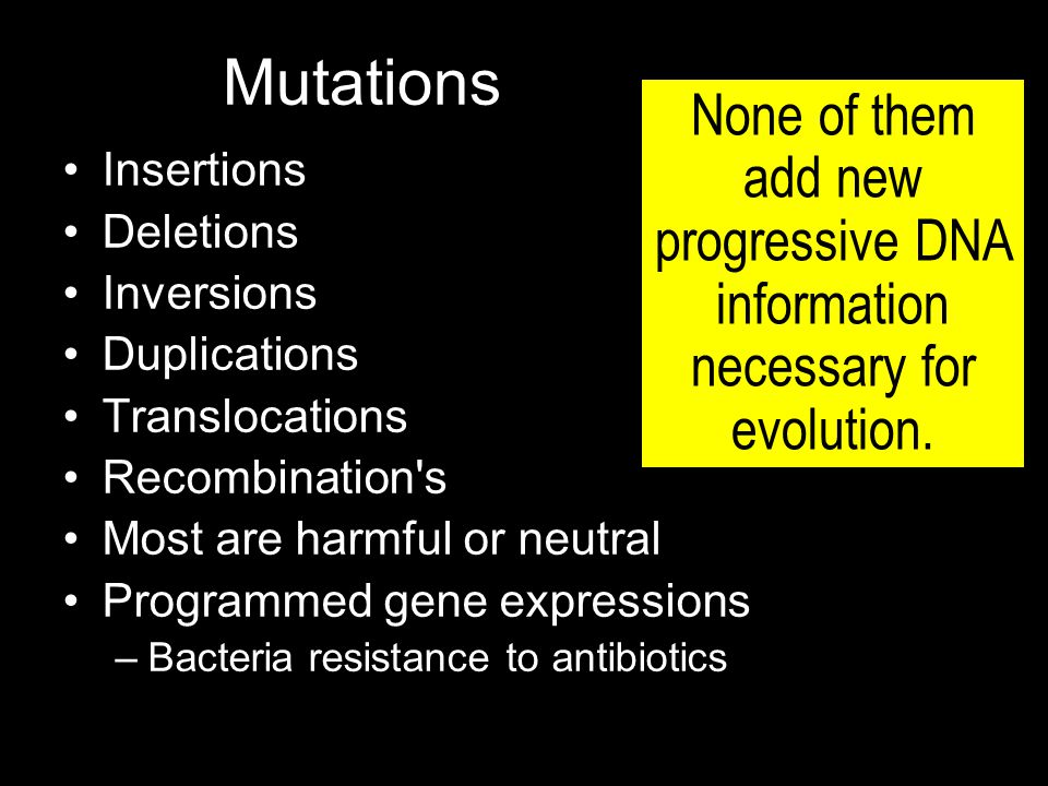 Mutations Insertions Deletions Inversions Duplications Translocations Recombination s Most are harmful or neutral Programmed gene expressions –Bacteria resistance to antibiotics None of them add new progressive DNA information necessary for evolution.