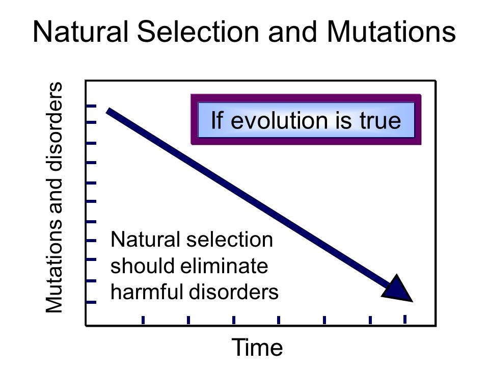 Natural Selection and Mutations Time Natural selection should eliminate harmful disorders Mutations and disorders If evolution is true
