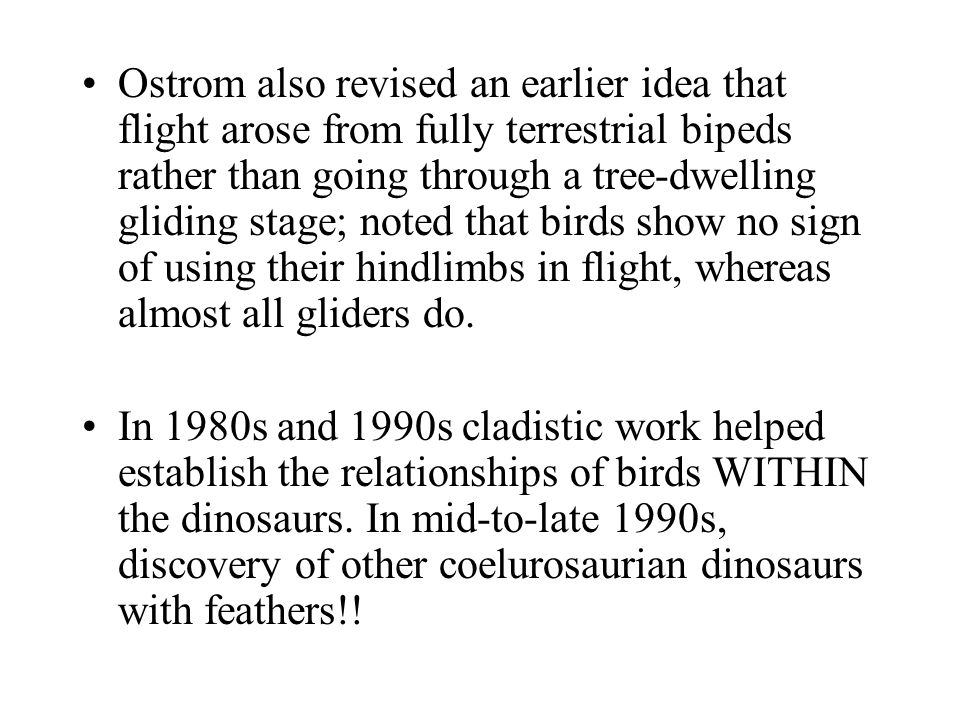 Ostrom also revised an earlier idea that flight arose from fully terrestrial bipeds rather than going through a tree-dwelling gliding stage; noted tha