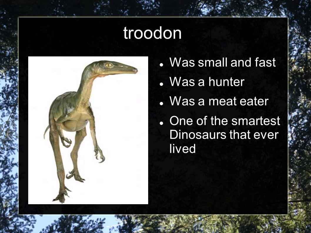 Kids dinos http://www.kidsdinos. com/ http://www.kidsdinos. com/ Play games Learn about dinosaur Dinosaur Facts Dinosaur pictures