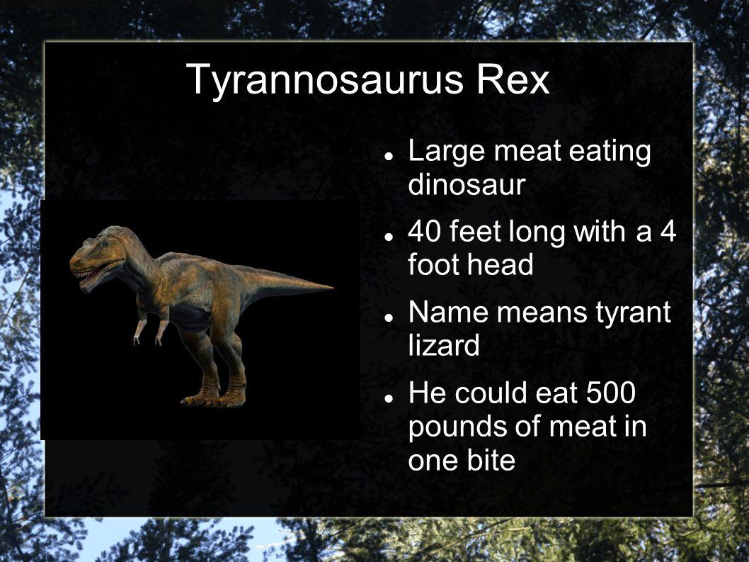 National Geographic http://animals.nationa lgeographic.com/pre historic/tyrannosauru s-rex/ http://animals.nationa lgeographic.com/pre historic/tyrann