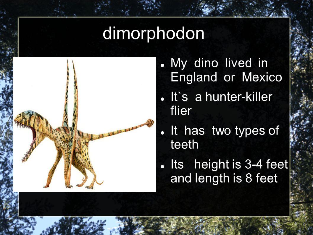Kid Dig Dinos http://www.kidsdigdin os.com/ http://www.kidsdigdin os.com/ Dinosuar names Dinosaur history Dinosaur facts