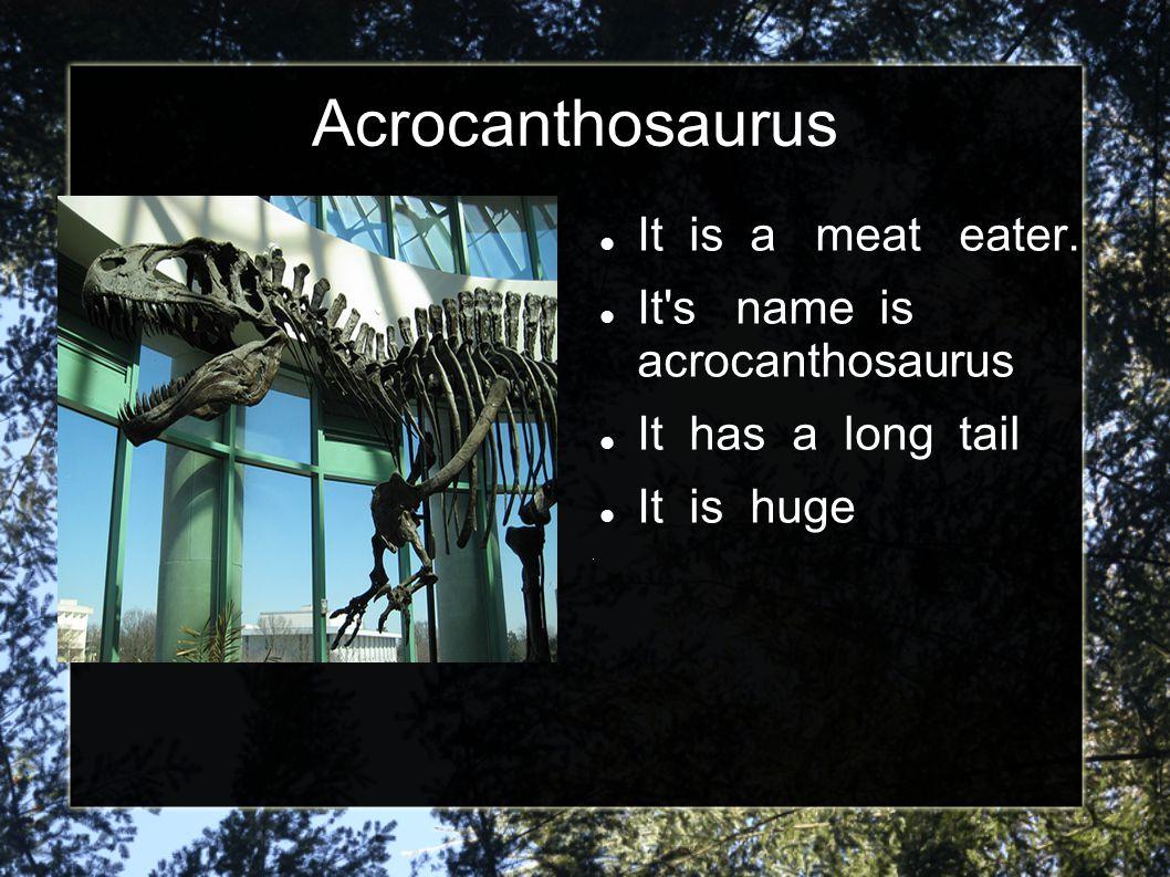 Dinosaurs For Kids http://www.kidsdinos. com/ http://www.kidsdinos. com/ Memory games Make your own dinosaur Dinosaur match