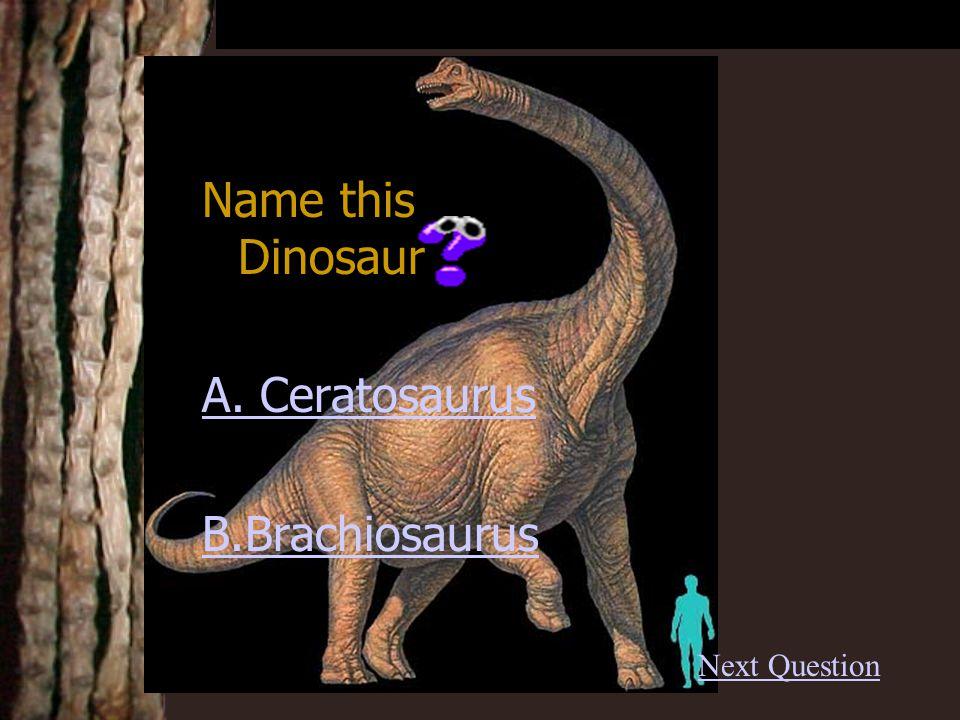 Name this Dinosaur A. Ceratosaurus B.Brachiosaurus Next Question