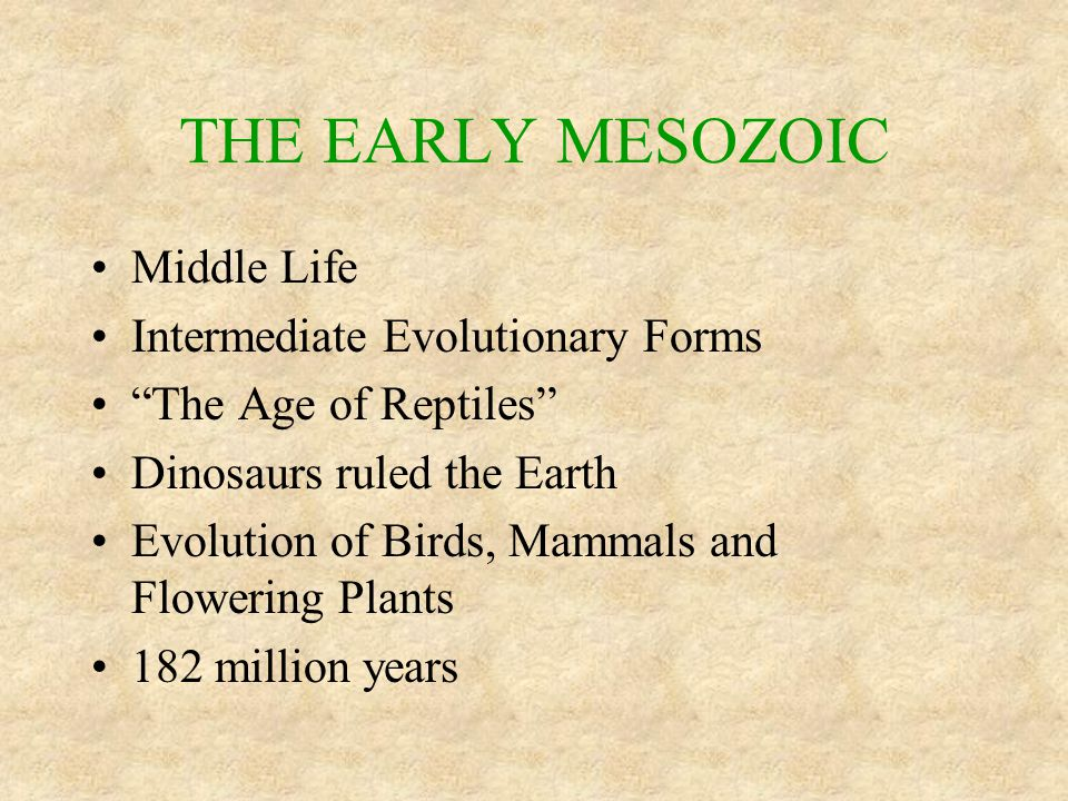 """THE EARLY MESOZOIC Middle Life Intermediate Evolutionary Forms """"The Age of Reptiles"""" Dinosaurs ruled the Earth Evolution of Birds, Mammals and Floweri"""