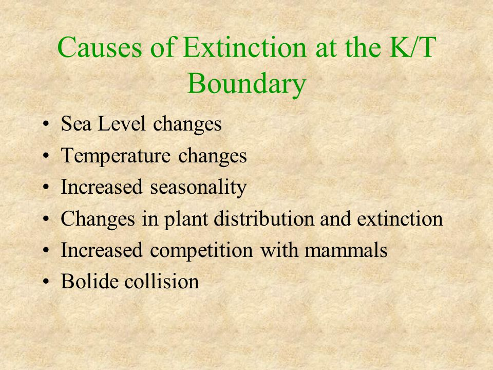 Causes of Extinction at the K/T Boundary Sea Level changes Temperature changes Increased seasonality Changes in plant distribution and extinction Increased competition with mammals Bolide collision