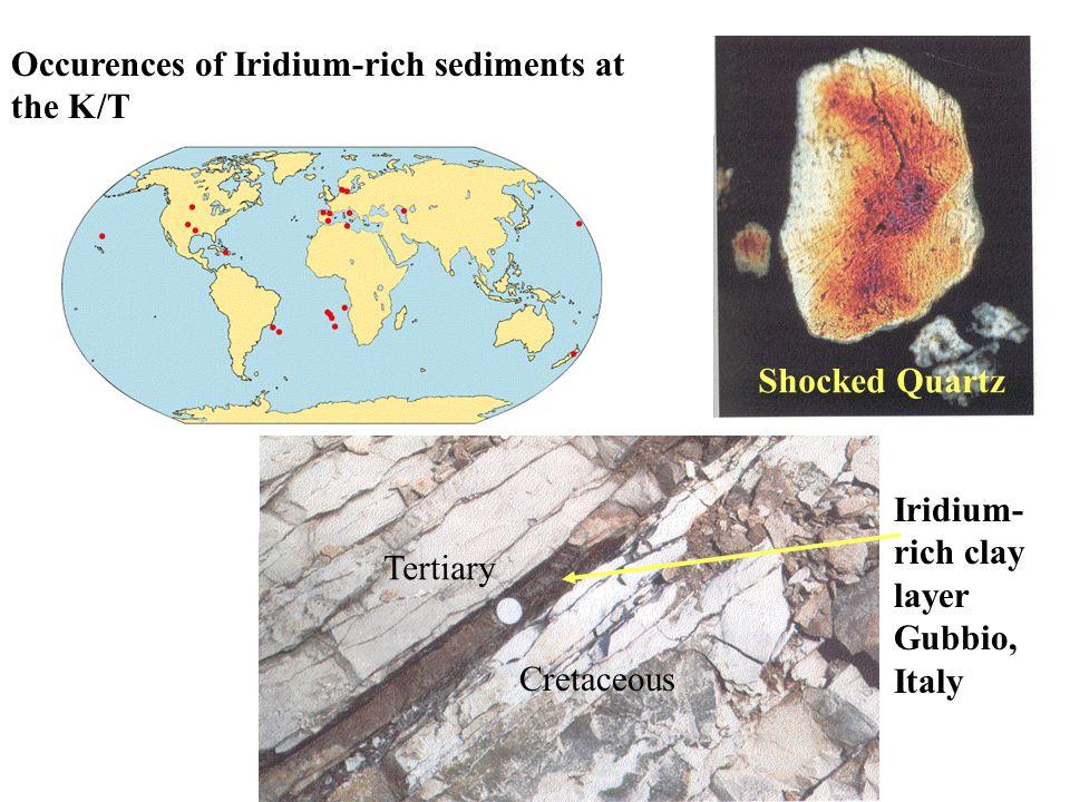 Shocked Quartz Iridium- rich clay layer Gubbio, Italy Cretaceous Tertiary Occurences of Iridium-rich sediments at the K/T