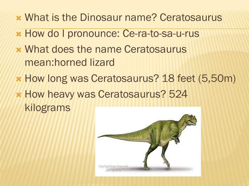  What dinosaur class was Ceratosaurus assigned to.