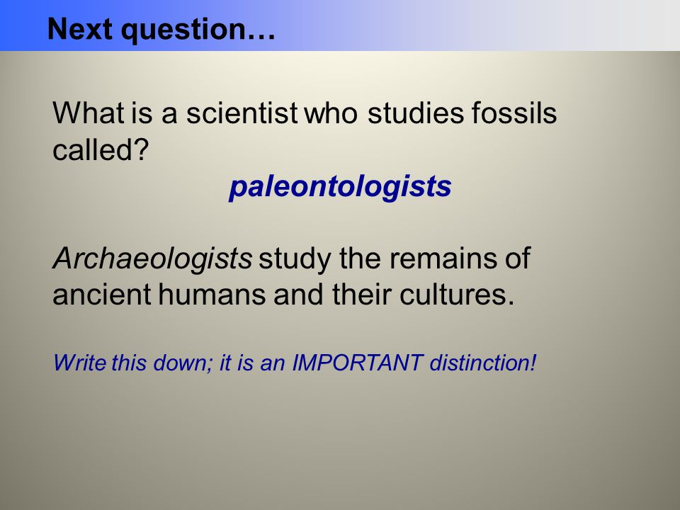 What is a scientist who studies fossils called? paleontologists Archaeologists study the remains of ancient humans and their cultures. Write this down