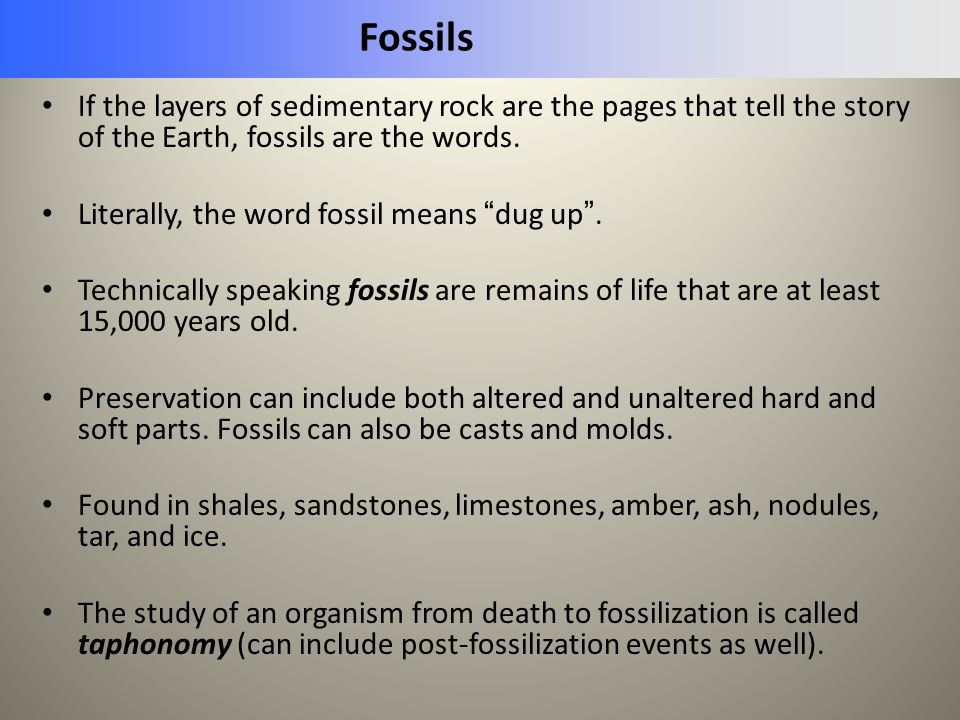 """Fossils If the layers of sedimentary rock are the pages that tell the story of the Earth, fossils are the words. Literally, the word fossil means """" du"""