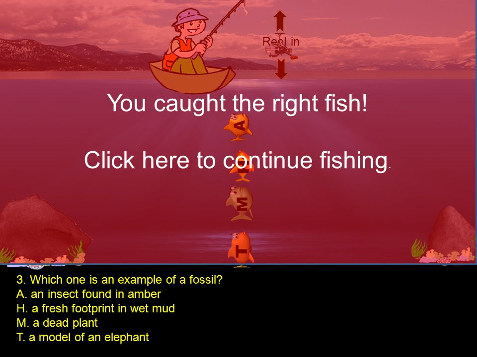 ReeI in You caught the right fish! Click here to continue fishing. 2, Which statement BEST describes how the fossil bones of a dinosaur are formed? A.
