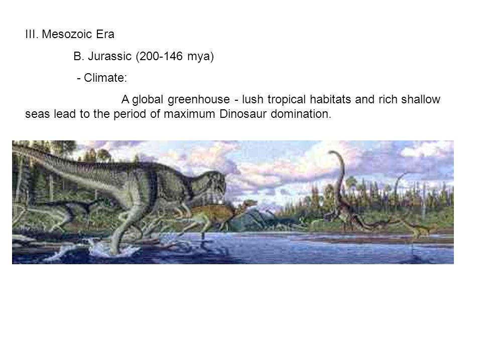 III. Mesozoic Era B.