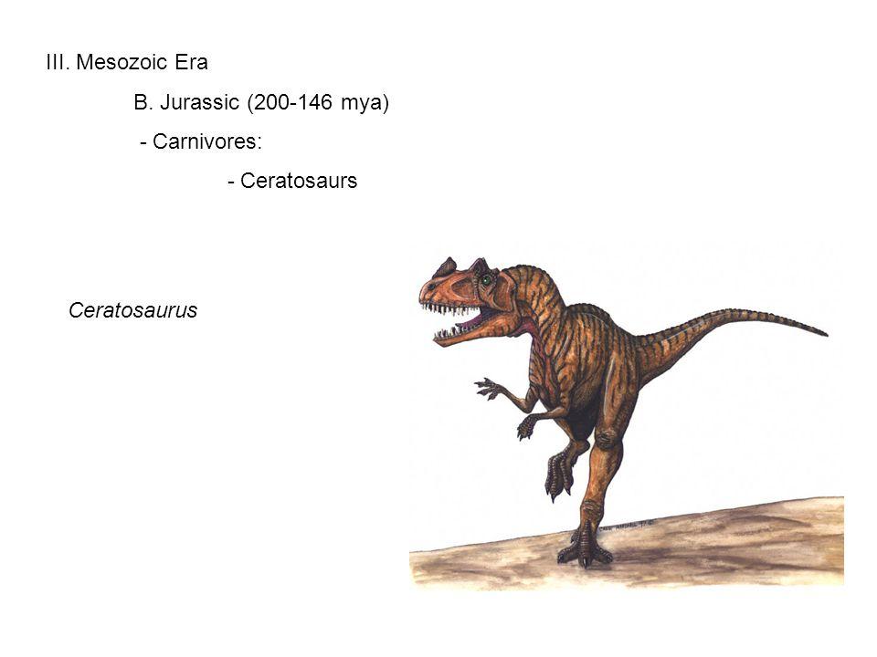 III. Mesozoic Era B. Jurassic (200-146 mya) - Carnivores: - Ceratosaurs Ceratosaurus