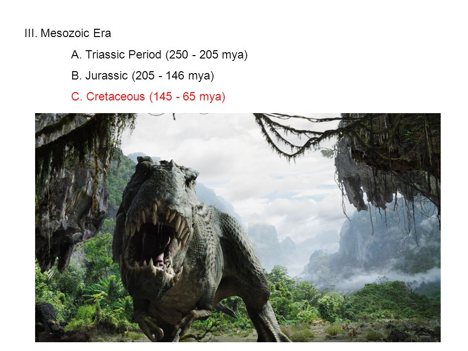 III. Mesozoic Era A. Triassic Period (250 - 205 mya) B.