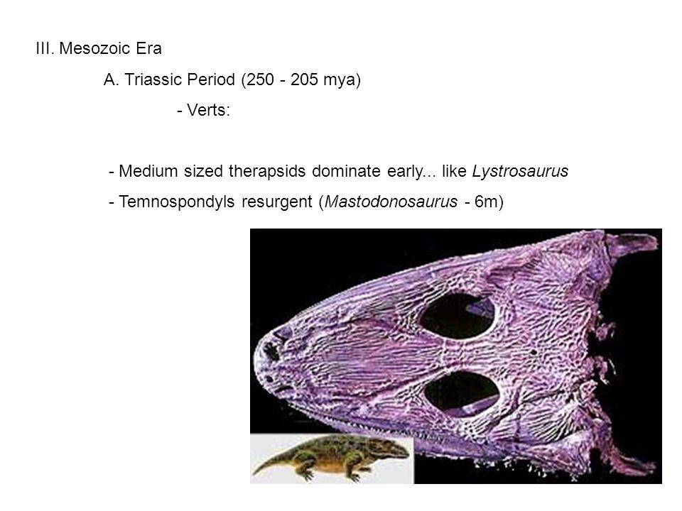 III. Mesozoic Era A.