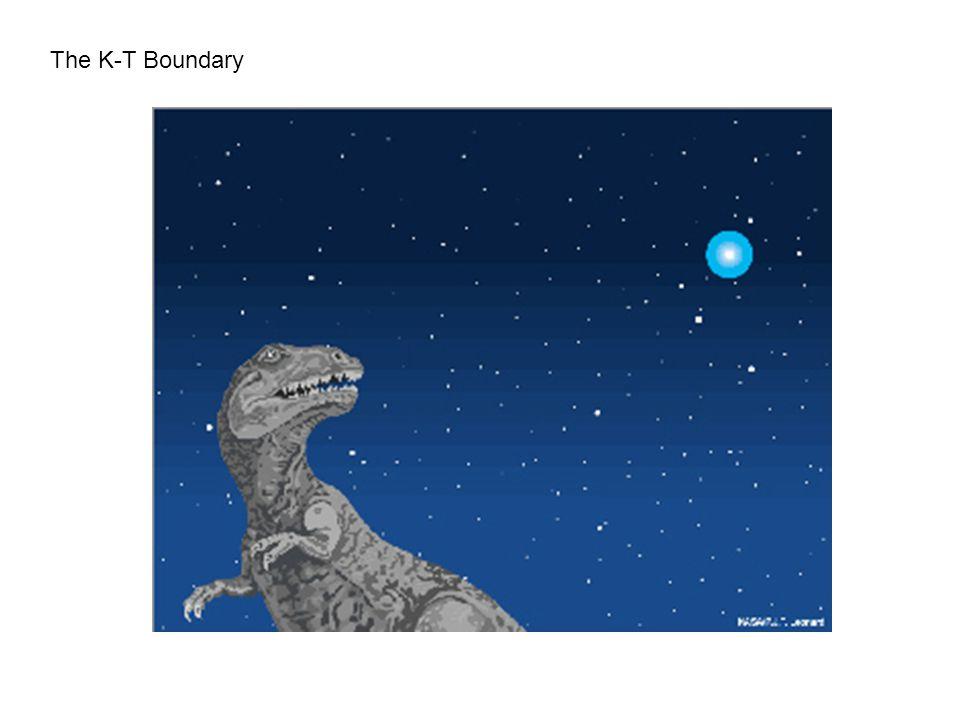 The K-T Boundary
