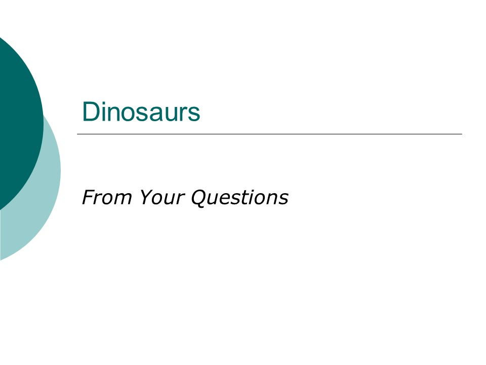 Dinosaurs From Your Questions