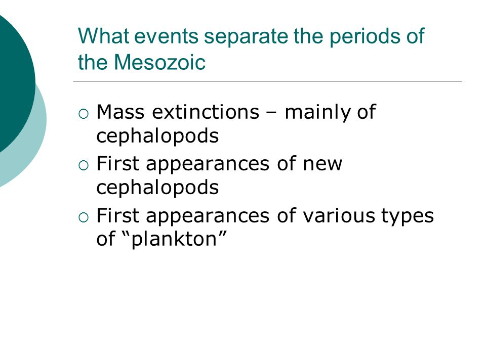 What events separate the periods of the Mesozoic  Mass extinctions – mainly of cephalopods  First appearances of new cephalopods  First appearances