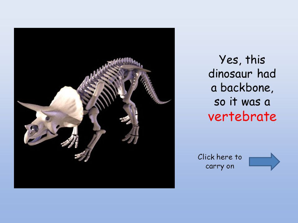 Yes, this dinosaur had a backbone, so it was a vertebrate Click here to carry on